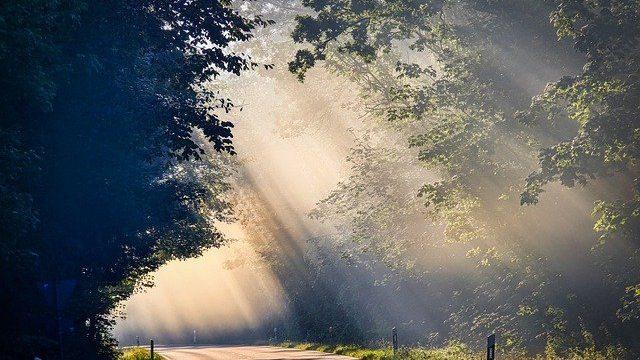 fog-4479936_640